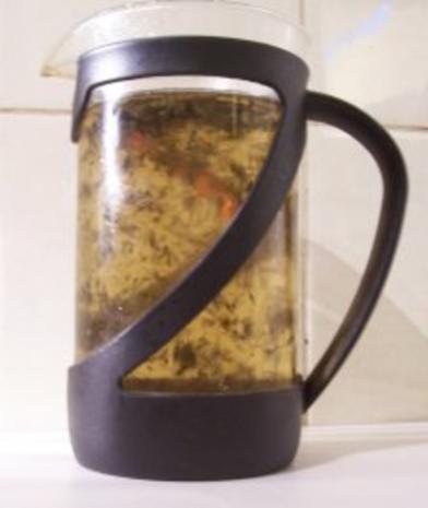 Getränk: Zimt-Minze-Tee - Rezept - Bild Nr. 2