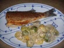 Loup de mer mit Kartoffel-Rosenkohl-Gratin - Rezept