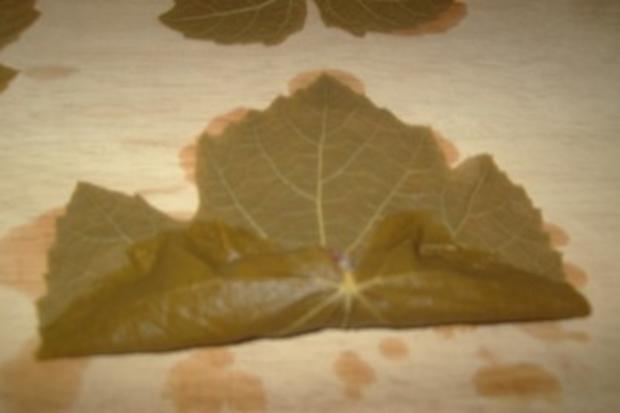 Gefüllte Weinblätter, mit Fleisch - Rezept - Bild Nr. 6