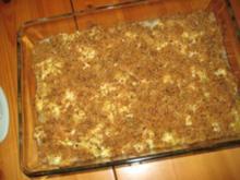 Fischfilet mit Spitzkohl unter Kräuterkruste - Rezept