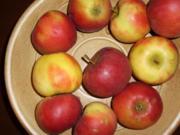 Apfelcreme - Rezept