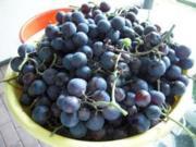 Weintrauben-Gelee - Rezept