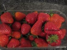 Erdbeer-Sorbet - Rezept