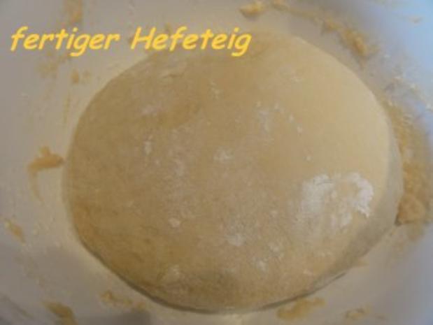 Hefe:    APRIKOSEN-BLECHKUCHEN mit  Butterstreusel - Rezept - Bild Nr. 3