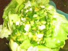 Grüner Salat mit Orangen - Mango - Dressing - Rezept