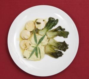 Jakobsmuscheln mit Kokos-Kartoffelbrei und Bok-Choi-Gemüse (Antonia Langsdorf) - Rezept