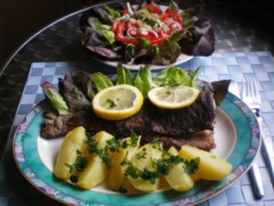"Forelle ""Müllerin"" mit Petersilienkartoffeln und Salat - Rezept"