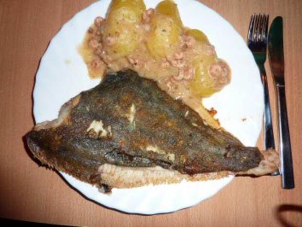 Fisch: Scholle gebraten mit Krabbensoße - Rezept