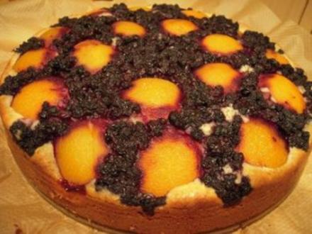 Heidelbeer-Aprikosenkuchen - Rezept