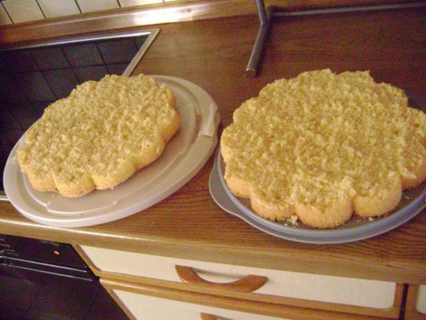 Bisquitboden hoch - Biskuit - Bisquit - Tortenboden hell oder dunkel - wie vom Bäcker - Rezept - Bild Nr. 9