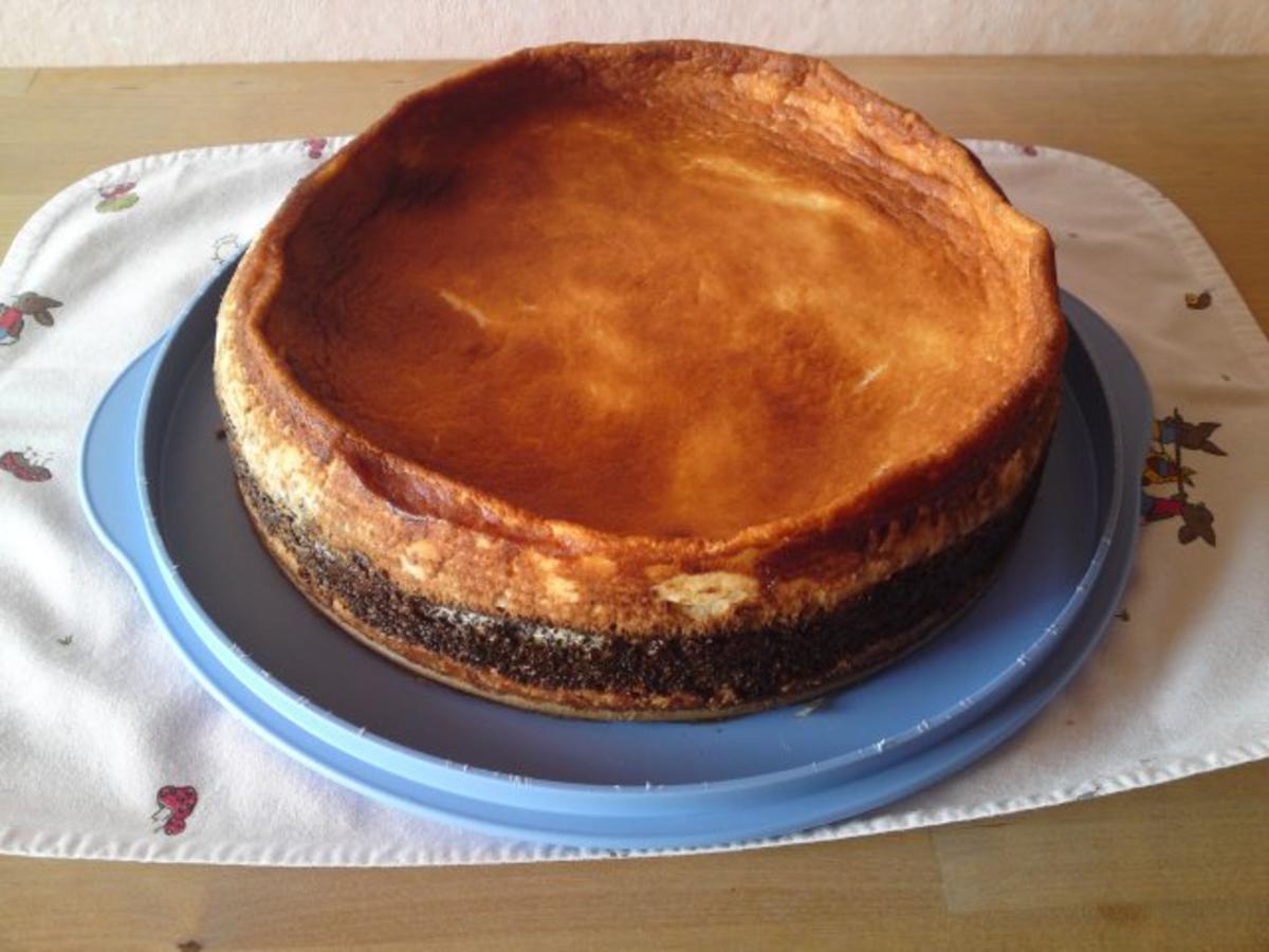 10 Mohn Schmand Kuchen Mit Mohnfix Rezepte Kochbar De