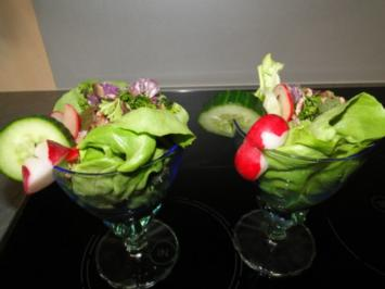 Pilzsalat mit Radieschen (so einfach, so lecker, so gut) (Fotos, aber wo sind die??) - Rezept