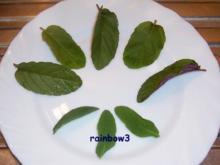 Likör: Magenbitter ~ Kräuterlikör - Rezept