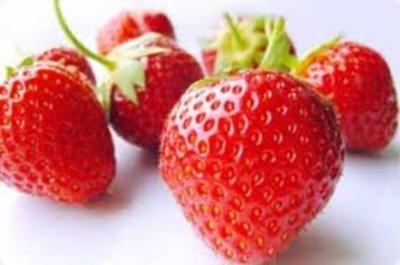 Erdbeersauce - Rezept