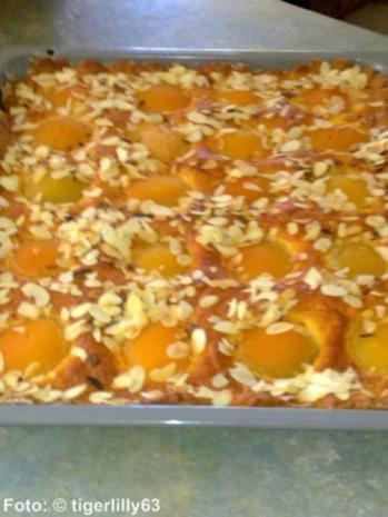 Aprikosen-Blechkuchen - Rezept