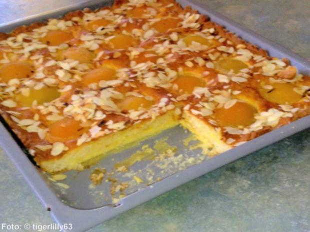 Aprikosen-Blechkuchen - Rezept - Bild Nr. 2
