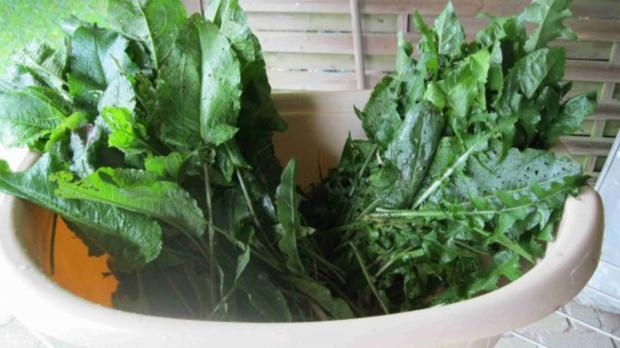 Würze für Gemüse und Salat - Rezept - Bild Nr. 6