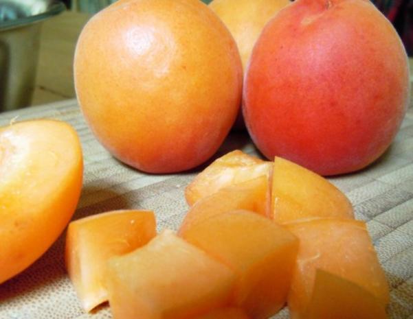 Zitronengras-Milchreis mit Aprikosen-Ingwer-Kompott - Rezept - Bild Nr. 2