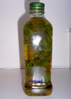Gewürz: Dill-Kräuteröl - Rezept