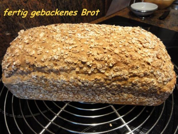 Brot:  VOLLKORN - HAFERFLOCKEN - Rezept - Bild Nr. 3