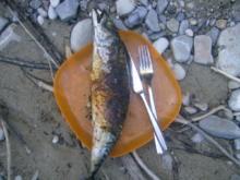 Steckerlfisch Makrele - Rezept