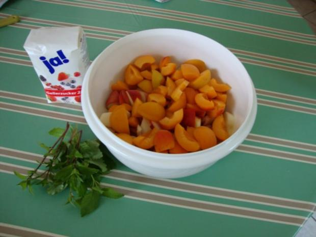 Aprikosen-Pfirsich-Mellisse-Minz Marmelade - Rezept - Bild Nr. 3