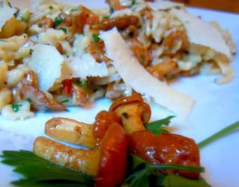 Spätzle mit pikanten Rahm-Pfifferlingen - Rezept
