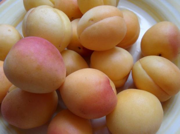 Pasta mit Aprikosen-Sauce - Rezept - Bild Nr. 3