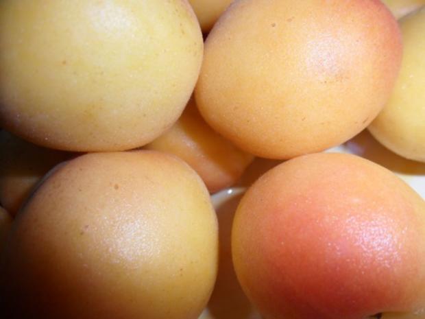 Pasta mit Aprikosen-Sauce - Rezept - Bild Nr. 4
