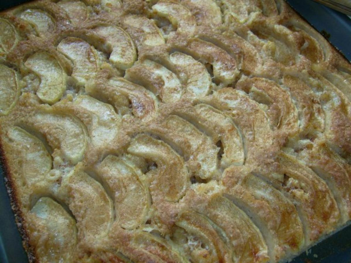 Schneller Blechkuchen Rezept 41 schneller blechkuchen rezepte kochbar de