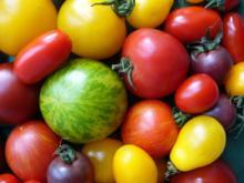 TATAR VON ZWEIERLEI LACHS AN DILL-SENFSAUCE UND FARBIGEM TOMATENSALAT - Rezept