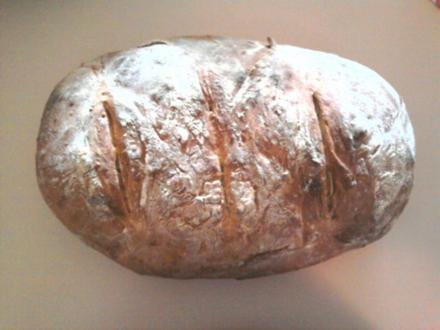 Helles Weizenbrot (Brötchen, Baguette) - Rezept