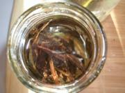 Vanille- Essenz - Rezept