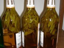Salbeilikör mit Kandiszucker - Rezept