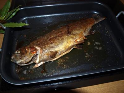 Lachsforelle aus dem Ofen mit buntem Pfeffer & Kräutern     (Truite saumon cuit au four) - Rezept
