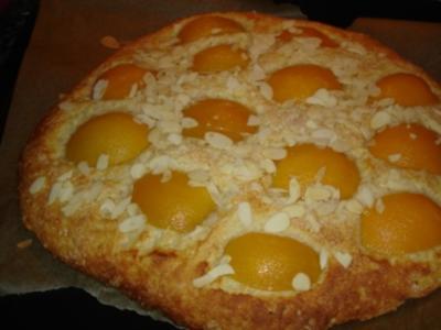 Aprikosen-Focaccia; italienisches Gebäck oder Kuchen - Rezept