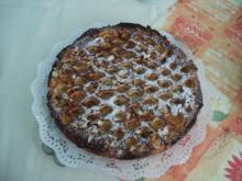 Aprikosenkuchen mit Riemchen - Rezept