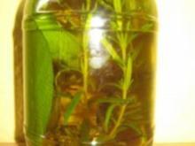 Vorratshaltung - mediteranes Kräuteröl - Rezept