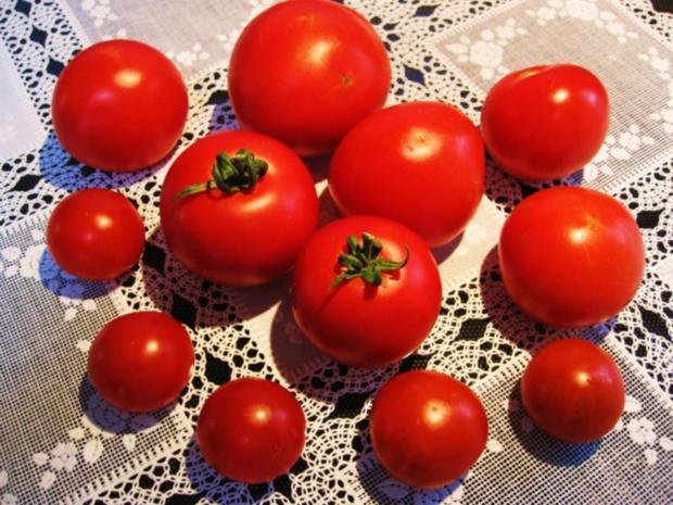 """Tomatensüppchen aus """"frischen"""" Tomaten ... - Rezept - Bild Nr. 2"""
