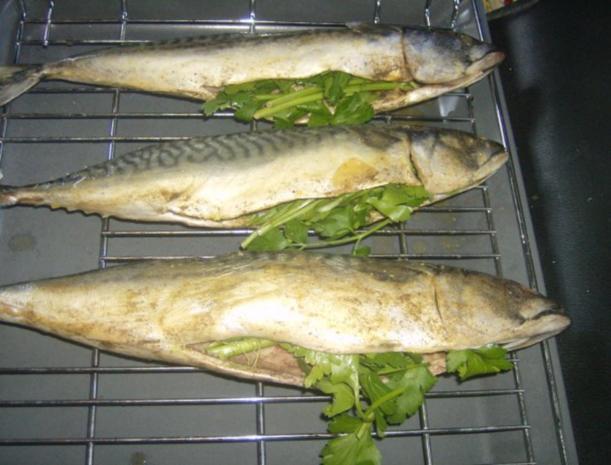Makrele aus dem Backofen - Rezept - Bild Nr. 5