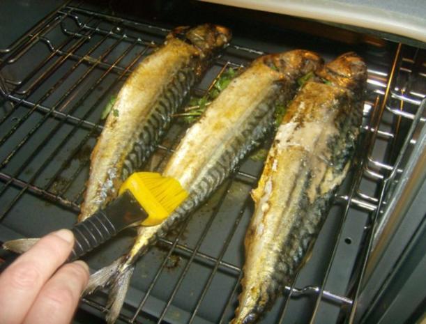 Makrele aus dem Backofen - Rezept