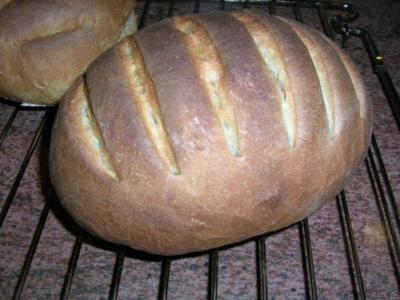 """Bruschetta-Brot               """" Pane per bruschette""""   selbst gebacken und gelingsicher - Rezept"""