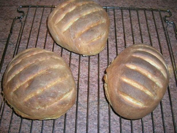 """Bruschetta-Brot               """" Pane per bruschette""""   selbst gebacken und gelingsicher - Rezept - Bild Nr. 2"""