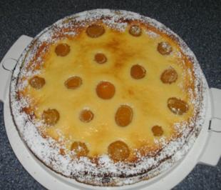 Aprikosen-Quark-Tarte - Rezept
