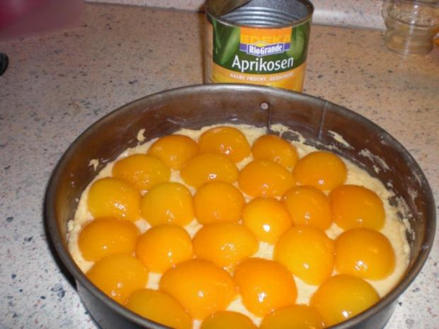 Aprikosen-Käsesahne-Kuchen - Rezept