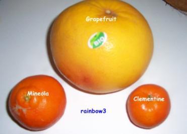 Rezept: Einmachen: Zitrus-Marmelade