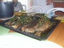 Kräuterforelle mit lauwarmem Kartoffelsalat - Rezept