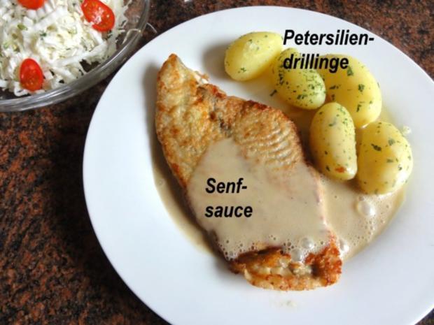 Fisch:   SCHOLLENFILET an Senfsauce - Rezept - Bild Nr. 8