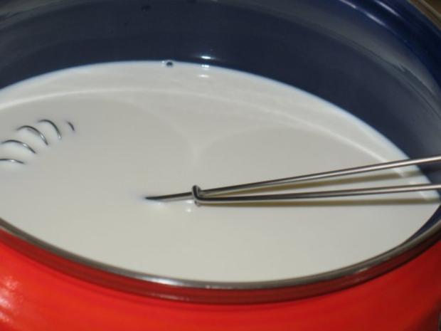 Basics - Naturjoghurt - selbst hergestellt - Rezept - Bild Nr. 5