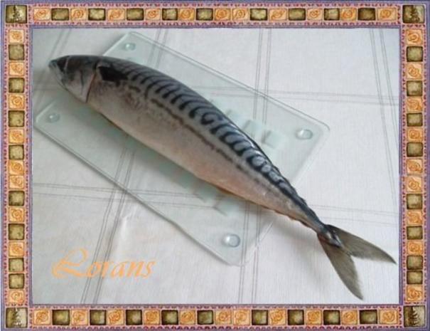 Gebratene Makrele mit einer raffinierten  Kräuterkomposition - Rezept - Bild Nr. 2